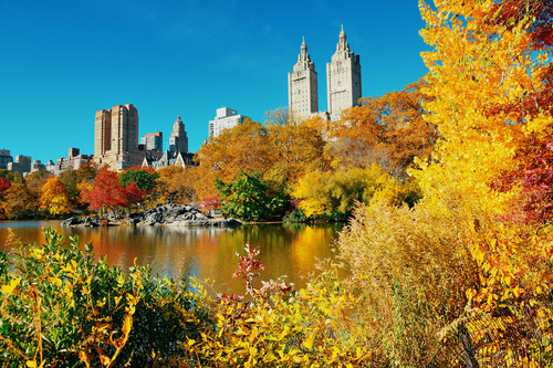 manhattan-times-square-guide-central-park-fall